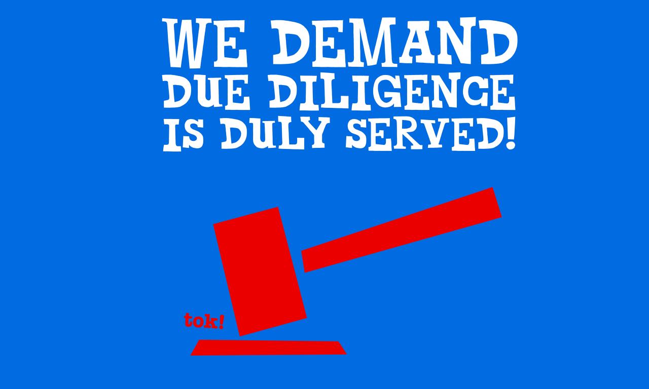 Dear EU Commission - Our demands for the new due diligence legislation
