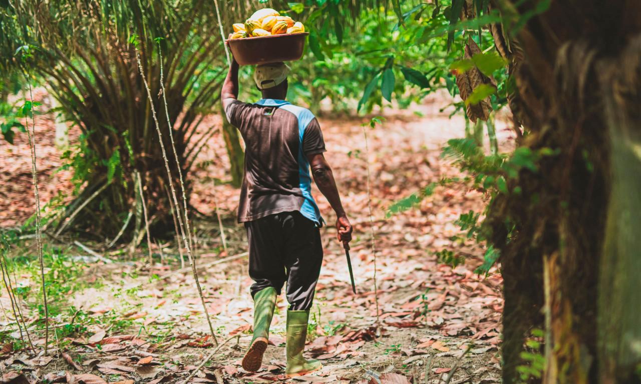 Menschenrechte dürfen nicht mehr durch den Kakao gezogen werden